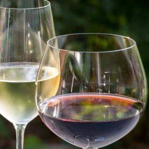 Vinos y Delicatessen